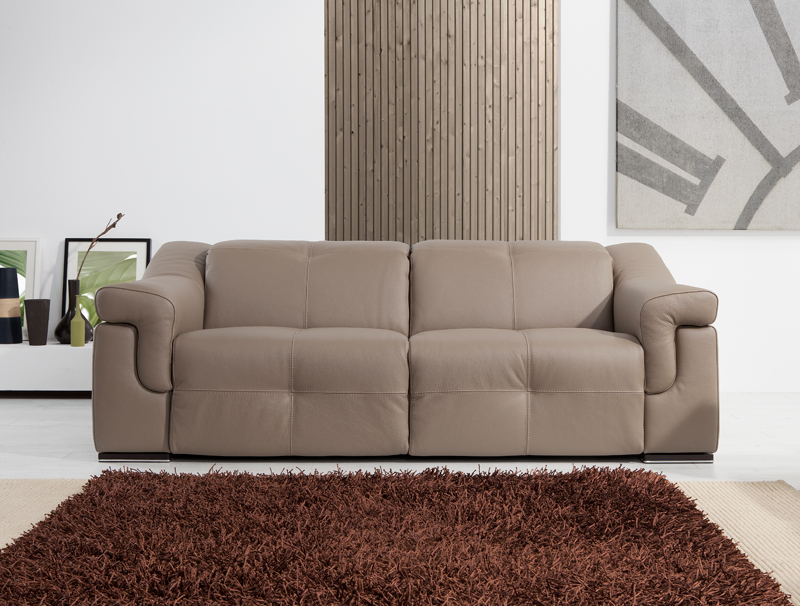 Upholstery Leather Sofa Modern Design 2 Seater