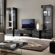 Modern-Exotic-Koto-Curio-Cabinet